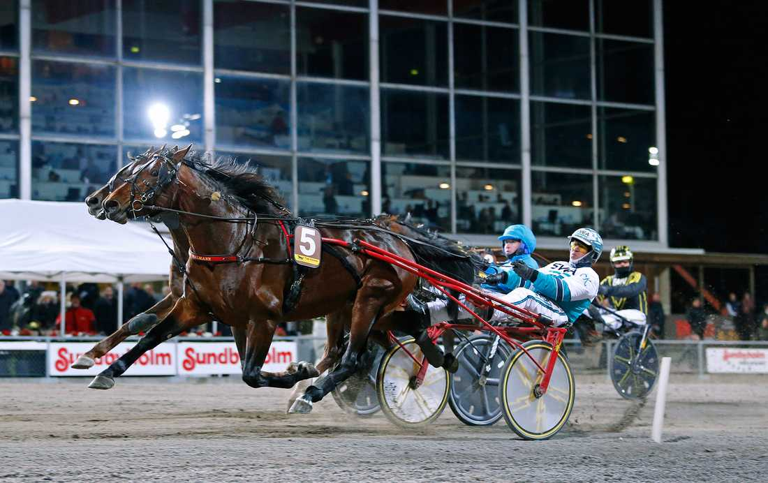 Forfantone Am vann Breeders' Crown med Örjan Kihlström