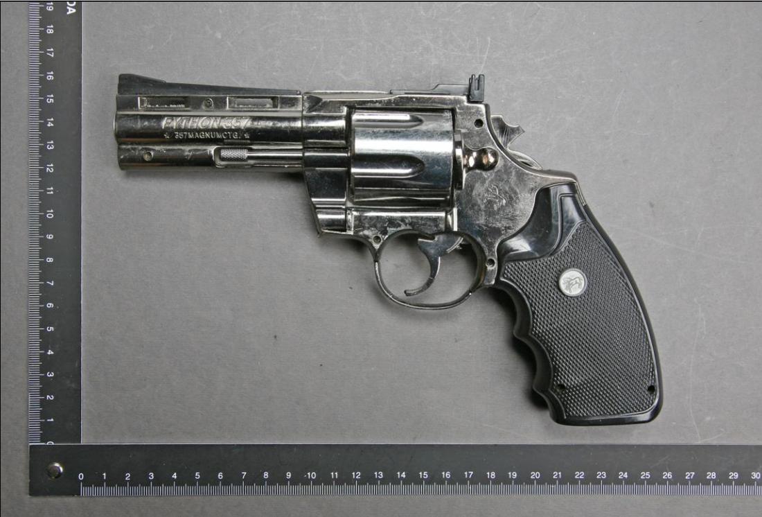 En av flera vapen som hittades i 25-åringens garage.
