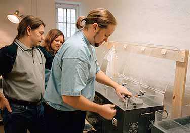 FINSLIPNING Syskonen Thomas, Wiveca och Joachim Frisell finjusterar de unika maskinerna som lagar repor på skivor. Företaget Cd-reparatören är nystartat - men har redan över 120 videobutiker som kunder.