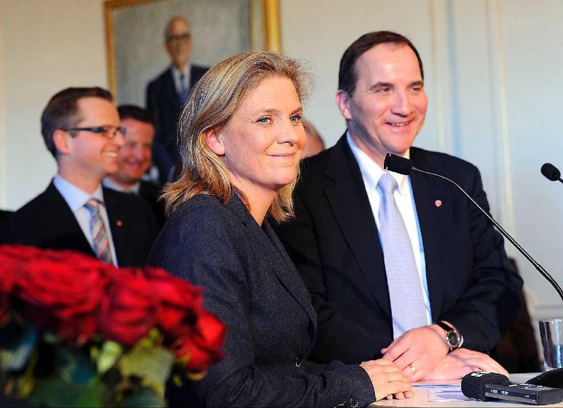 Utmanare Magdalena Andersson kommer senast från jobbet som överdirektör på Skatteverket. Nu blir hon ny skuggfinansminister för S.