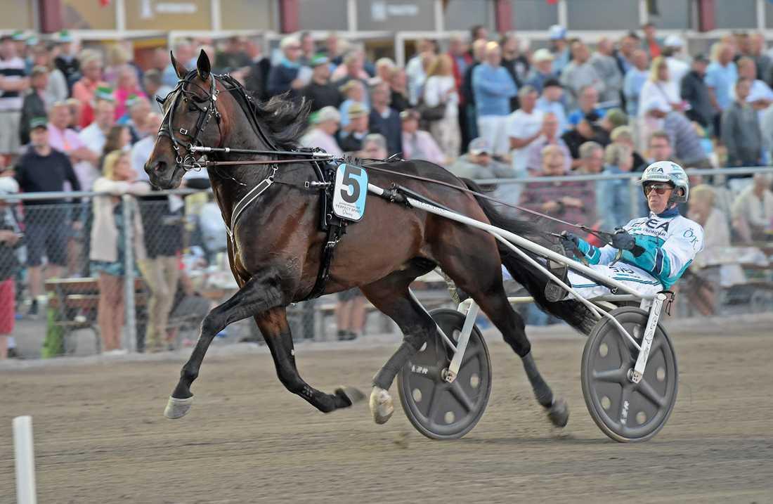 Perfect Spirit och Örjan Kihlström vid segern i Sprintermästaren.