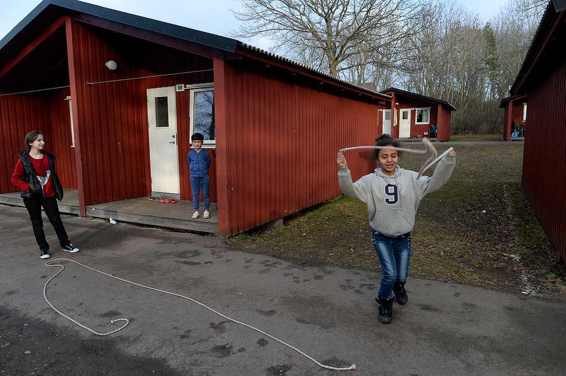 Eden bor på Lundegårds camping.