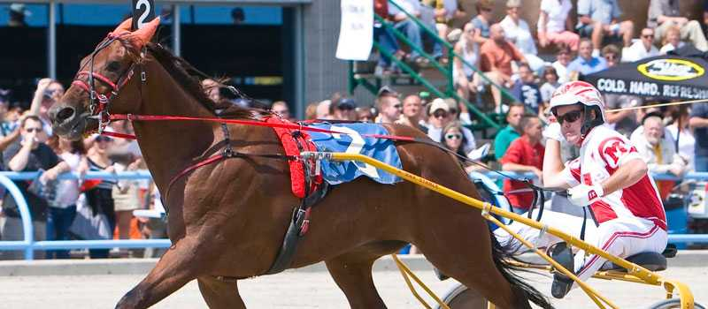 Får inget besked. Define the Worlds tränare John Bax vill gärna veta om hästen och kusken Paul MacDonnell är välkomna till Elitloppet.
