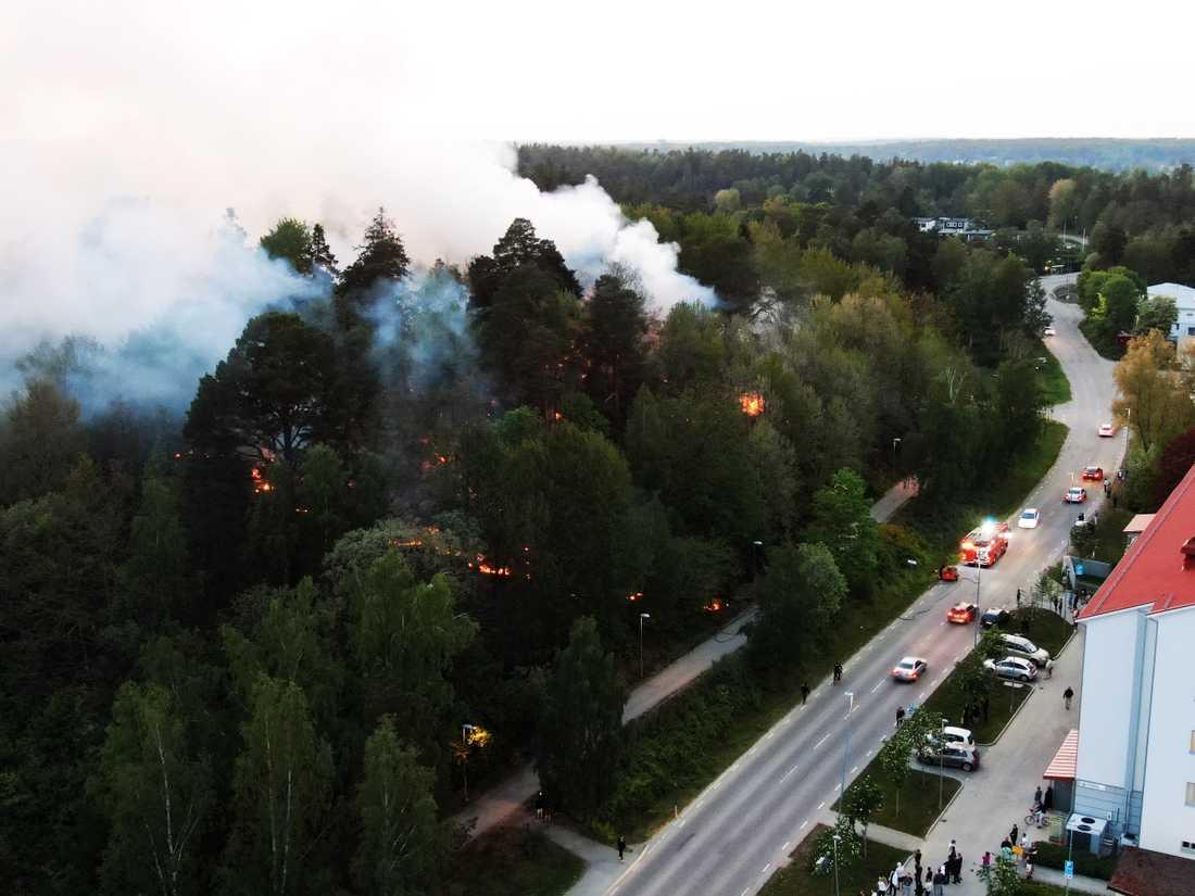 Under kvällen bekämpade brandförsvaret en skogsbrand i Norsborg.