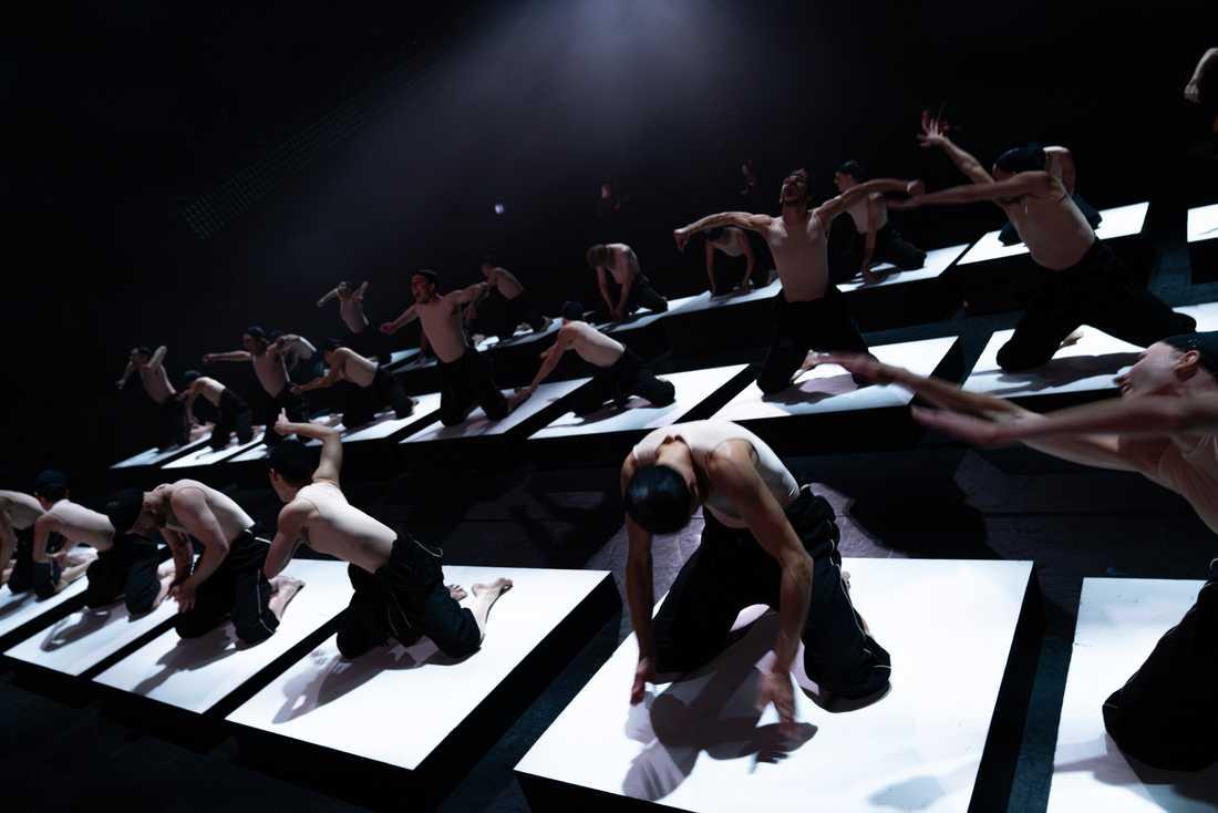 """Föreställningen """"Shift. Cacti"""" med Kungliga Baletten går att se digitalt. Pressbild."""