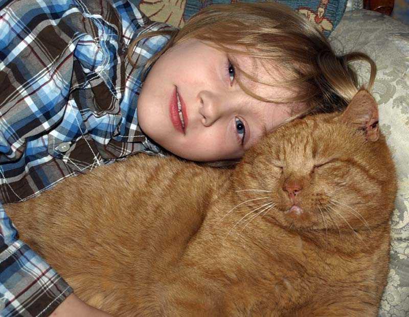 Katten Mjao är ett av de tjugotal älskade husdjur som skådespelaren erkänt att han dödat. Här gosar Amandines son med Mjao som senare blev ihjälhuggen.