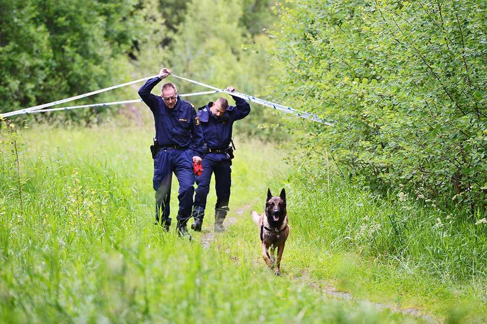 Polisen vid platsen där den mördade kvinnan hittades.