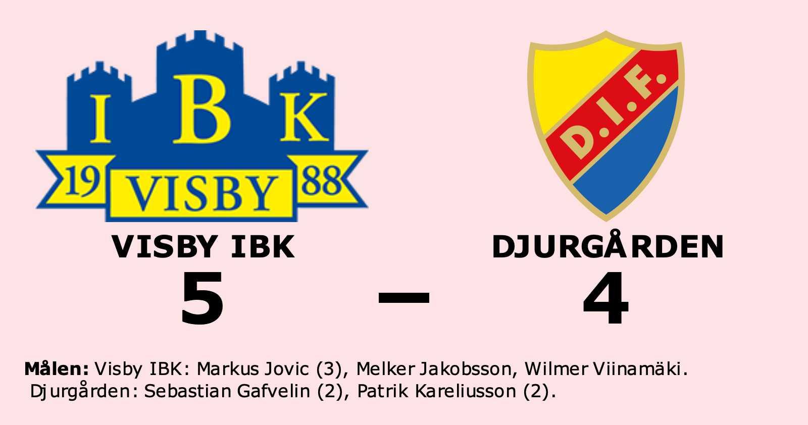 Djurgården föll i toppmötet mot Visby IBK