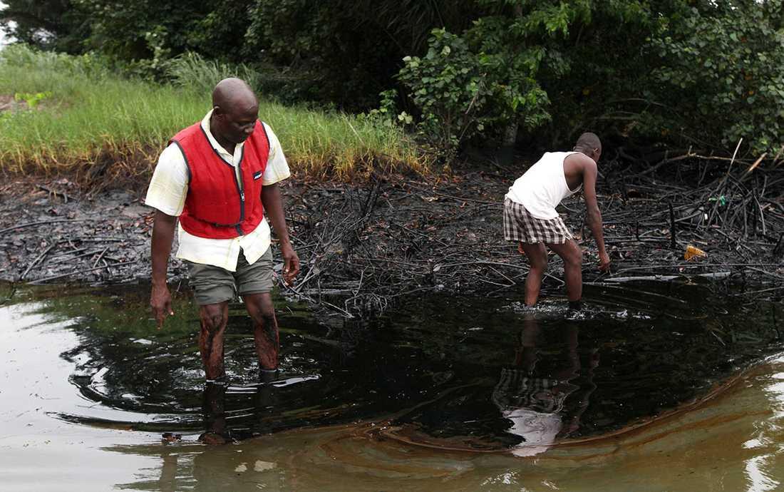 Shell har orsakat en miljökatastrof i samband med oljeutvinningen i Nigeria.