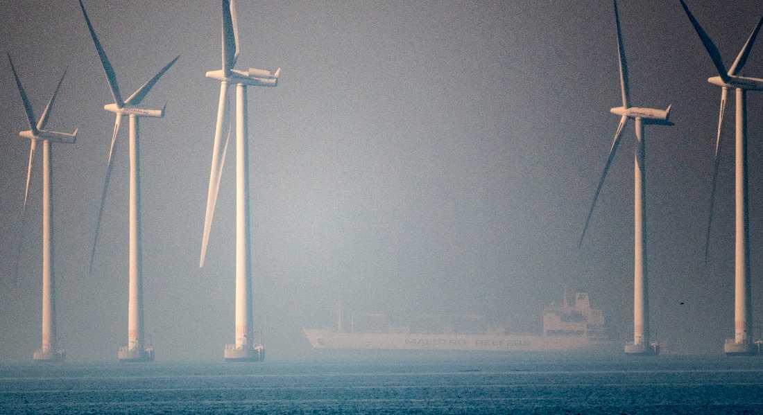I dimman bakom vindkraftparken Lillgrund i Öresund skymtar det containerfartyg som kolliderat med en rysk fregatt.