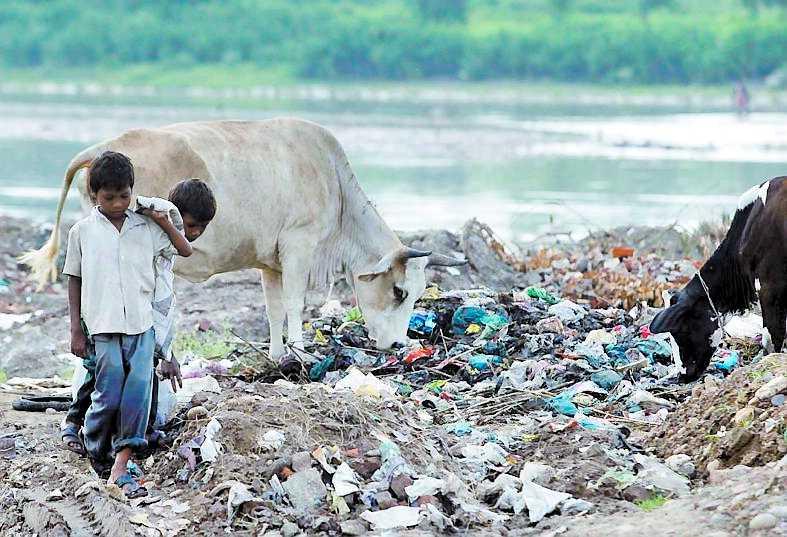 förbud I delstaten Himachal Pradesh ger plastkassar hårda straff.