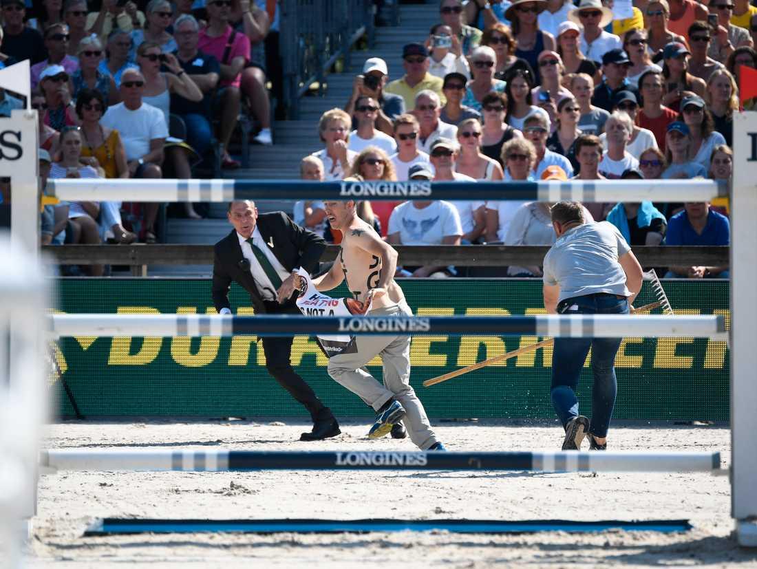 En djurrättsaktivist tog sig in på banan under EM-finalen.
