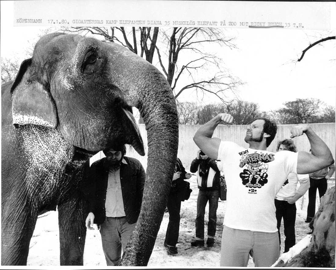 Tillsammans med en elefant 1980.