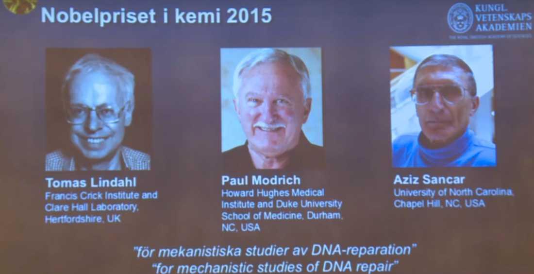 Trion som får dela på årets Nobelpris i kemi.