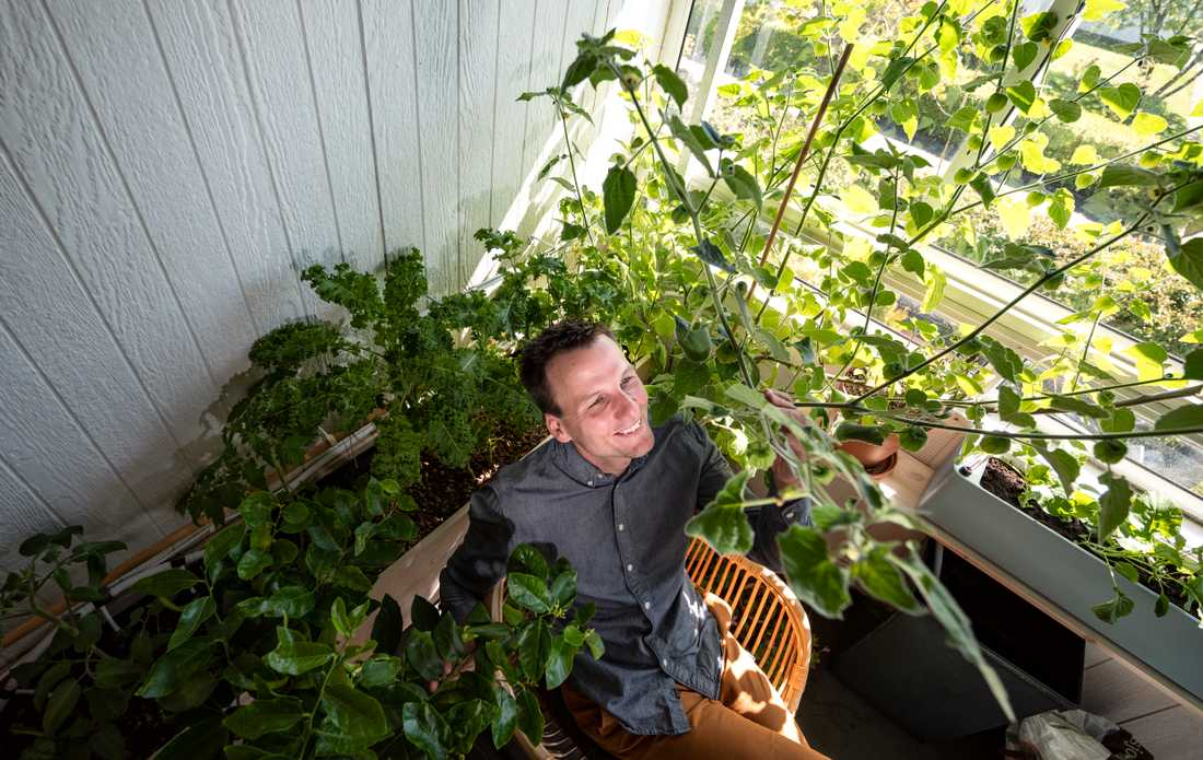 Odling fungerar även på en halvskuggig balkong. Tipset för små utrymmen är att också försöka utnyttja all plats som finns.