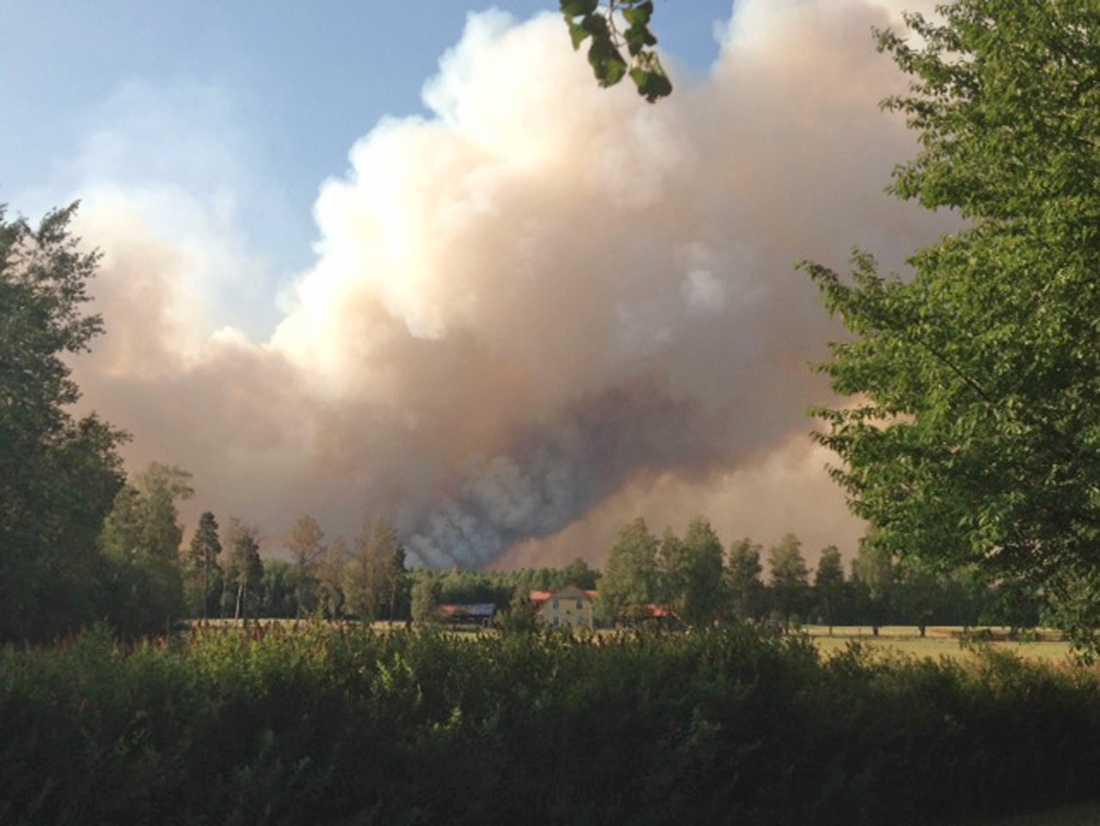 Vittnen har berättar om att himlen var svart av all brandrök.