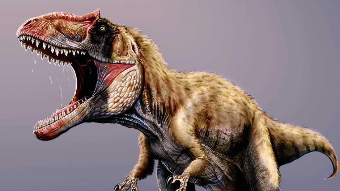 Ny forskning visar varför det fanns så få mellanstora rovdinosaurier.