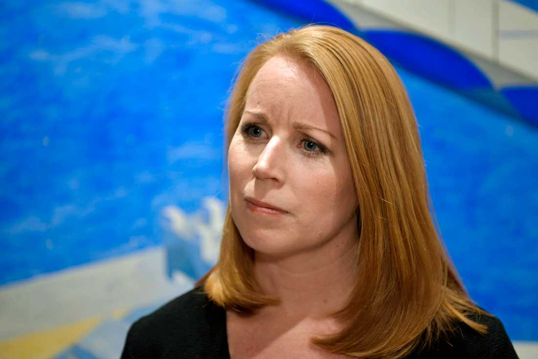 Annie Lööf, Centerpartiet.