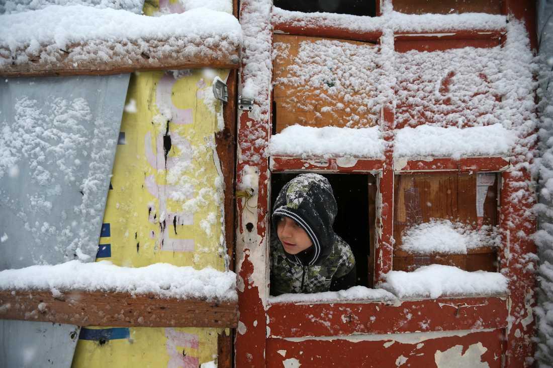 En pojke tittar ut från en barack i flyktinglägret i Libanon.