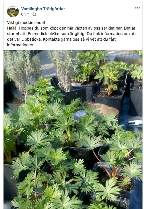 Handelsträdgårdens inlägg på Facebook.