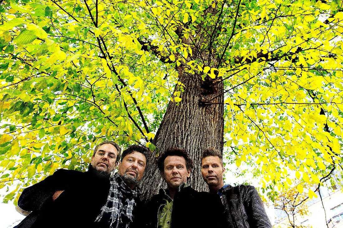 jubilarerMats Schubert, Michael Malmgren, Bo Sundström och Fredrik Dahl har spelat ihop i 20 år.