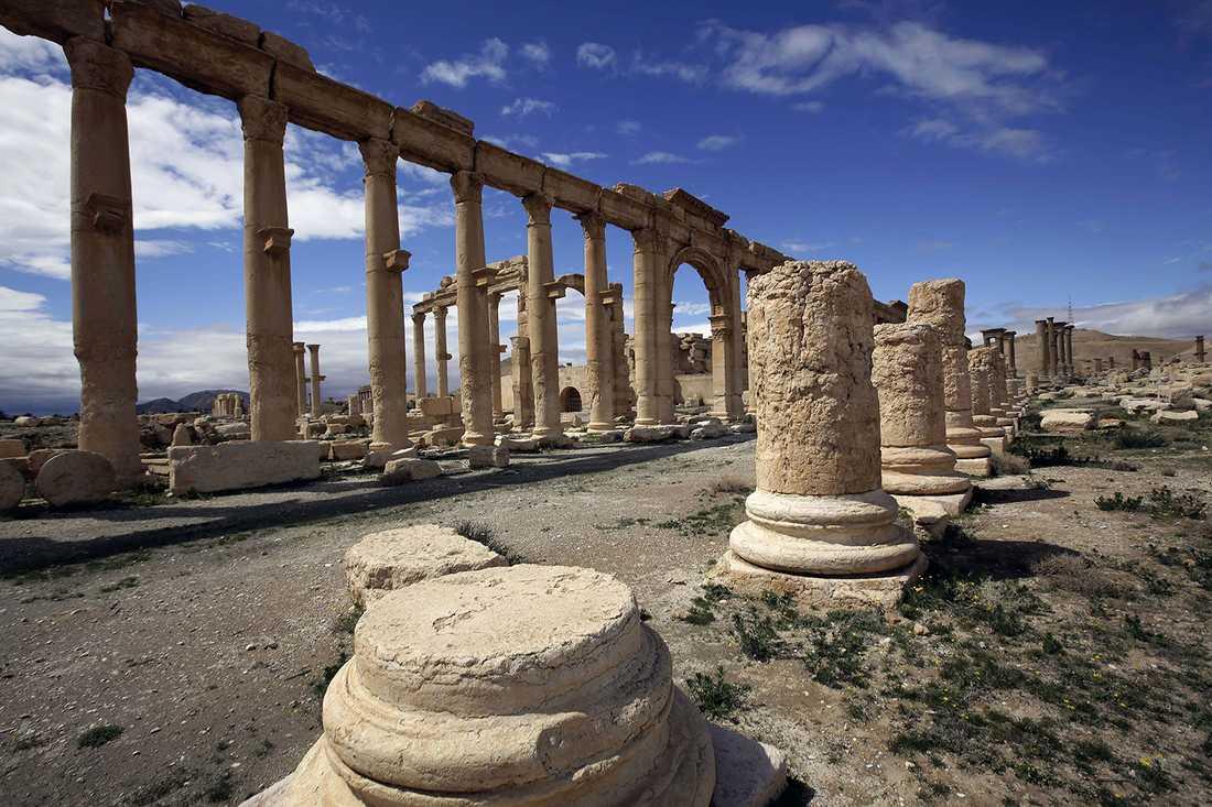 Terrorsekten, som redan har förstört nästan 300 kulturarv i Syrien, är nu bara kilometer från ruinerna, skriver nyhetsbyrån AP.