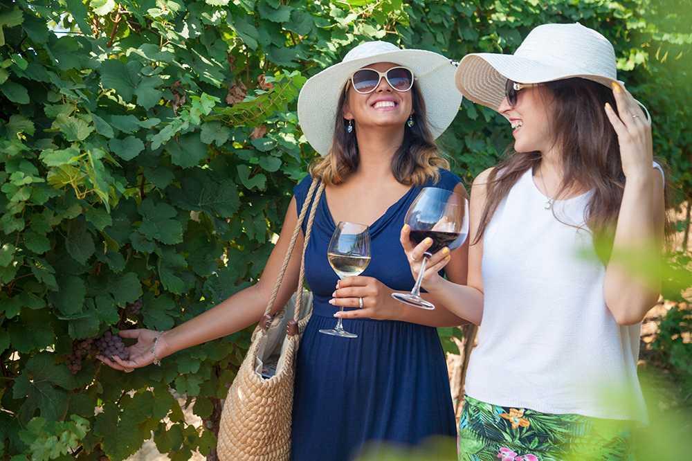 Vinprovning efter träningspasset har blivit populärt.
