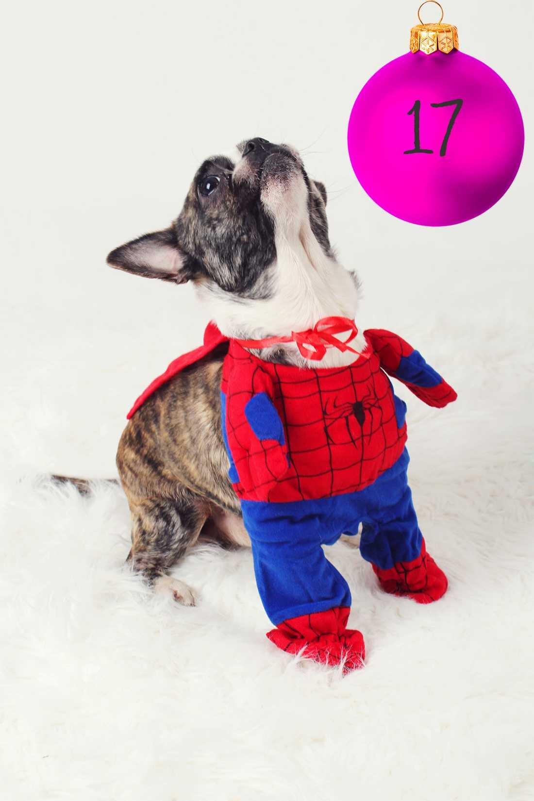 Kristinas tips: Gör Spiderman till familjefar Ge julklappar med nya möjligheter till barnen, kusinerna eller grannen. Kanske ett kitt till Spiderman - hur ser Spidermans barnvagn ut? Vilken mat äter Spidermanbarnen och vilket halsband väljer Spiderman till julfesten?