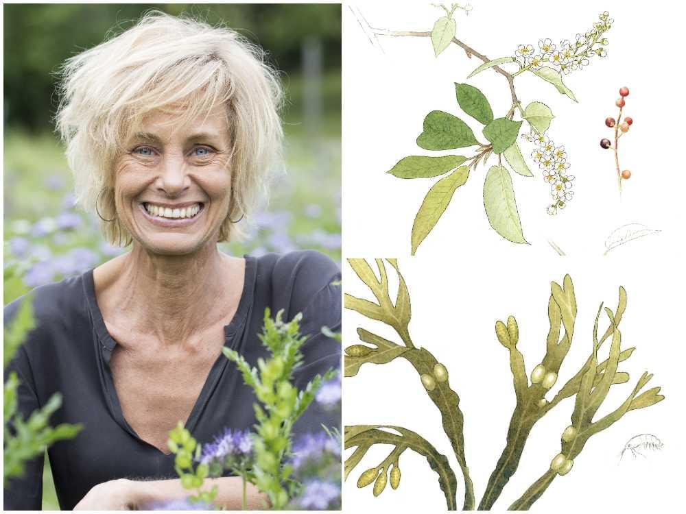 Lisen Sundgren tipsar om ätbara växter.