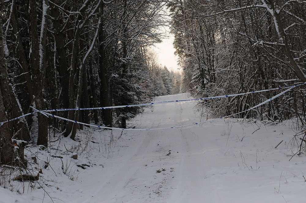 Den unga kvinnan kom springande genom skogen.