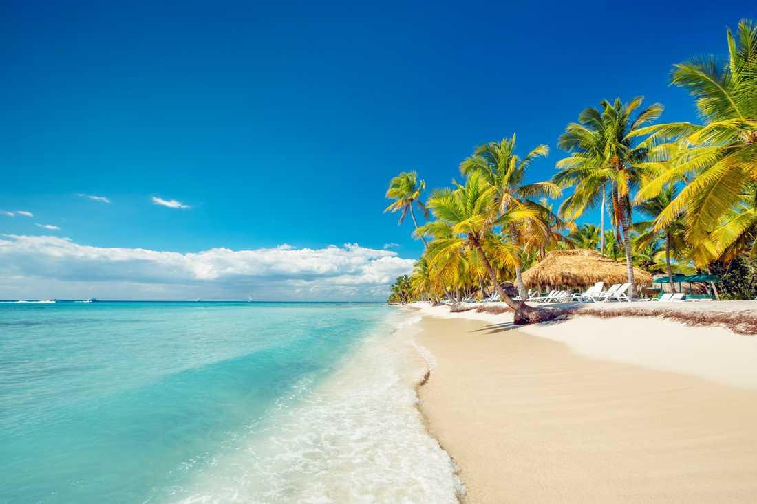 Ebba var på semester i Dominikanska republiken när den stora jordbävningen inträffade.