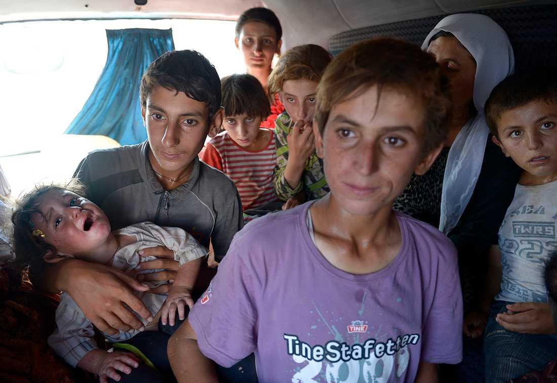 Flyr för sina liv. Många av de 150 000 som flytt upp på Sinjarberget är barn. Eftersom islamisterna även väntade på andra sidan, måste de nu fly berget - annars väntar hunger och uttorkning i den 40-gradiga hettan. Hoppet står nu till en väg som går ner från berget och in i en kurdkontrollerad del av Syrien. Här är en av de överfulla minibussar som Aftonbladet stöter på - med tolv barn, däribland den ettårige pojken Zarhen.