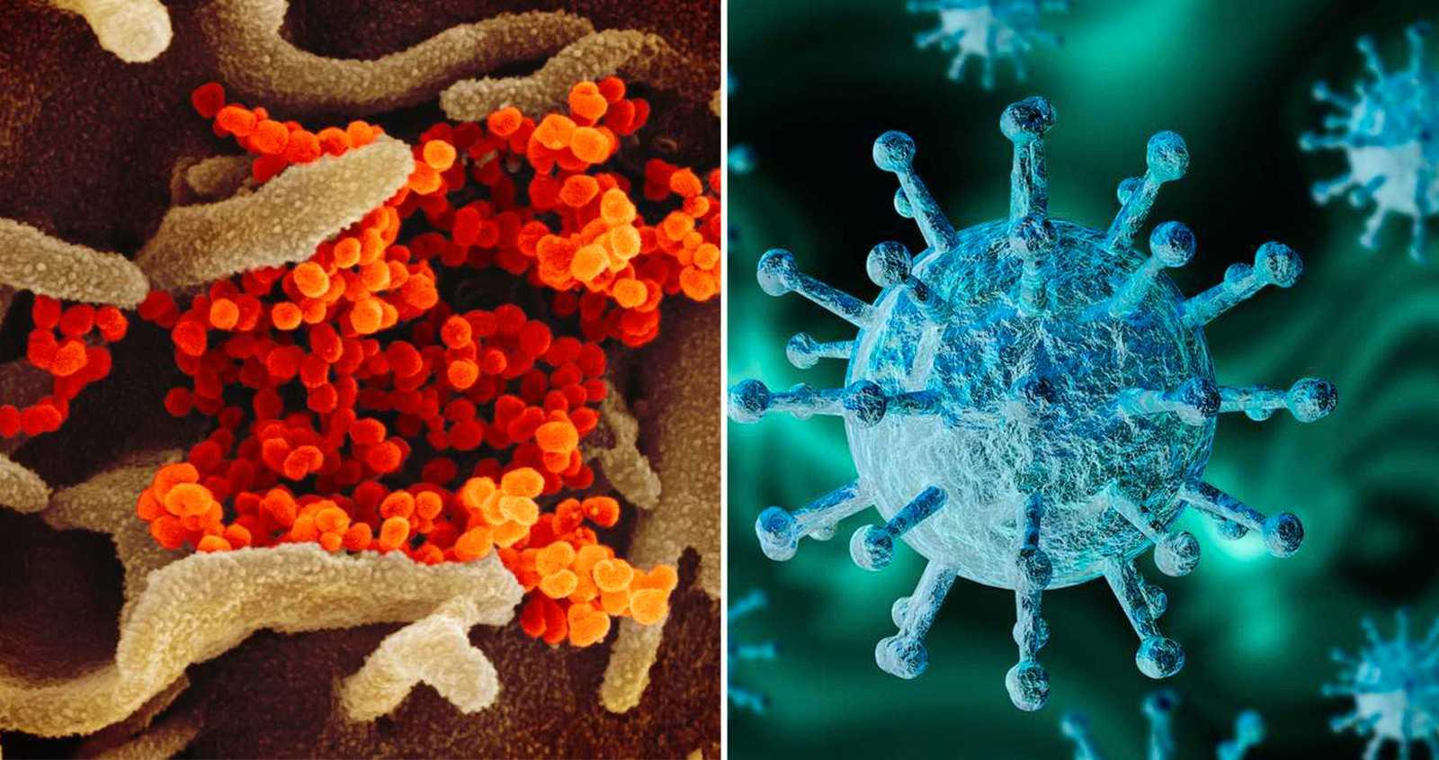 Nytt fall av coronaviruset i Sverige