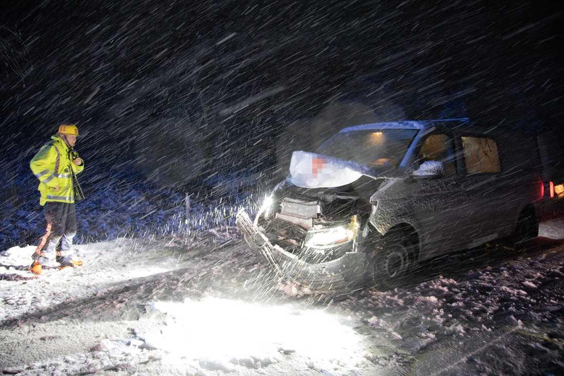 På väg 951 i Nässjö halkade en skåpbil rätt in i en skock kor tidigt på  lördagsmorgonen.