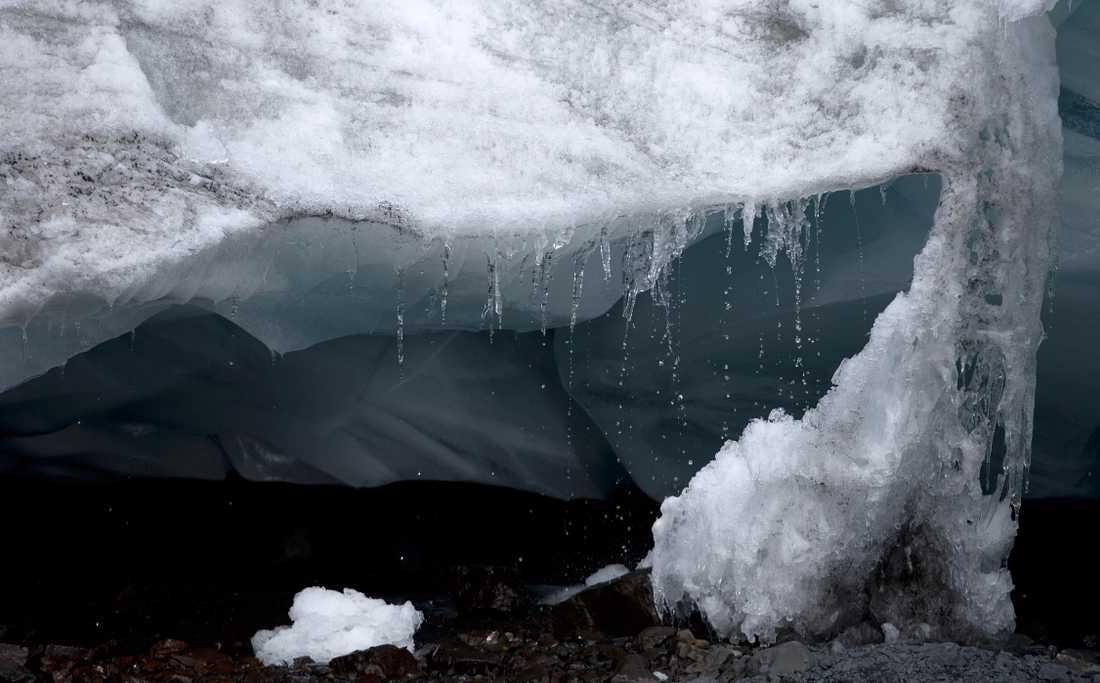 I decennier har Kanadas arktiska floder lagrat kol snabbare än Amazonas regnskogar, visar ny forskning från University of British Columbia. Arkivbild.