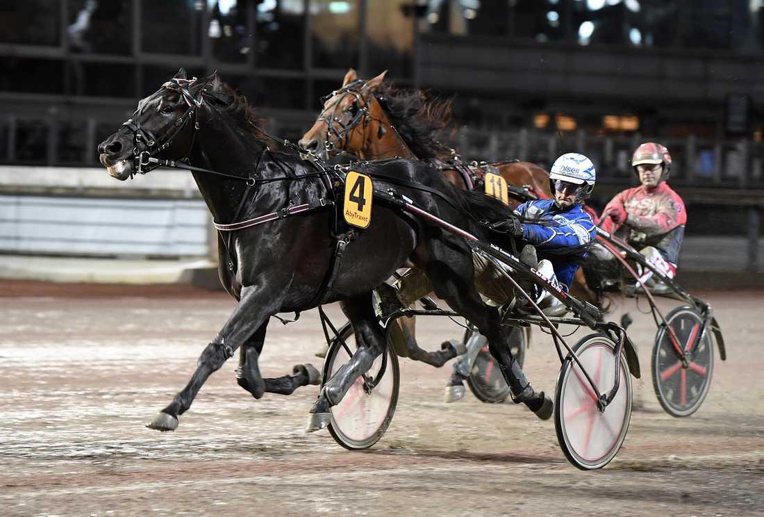 Very Kronos är en av starthästarna på lördag.