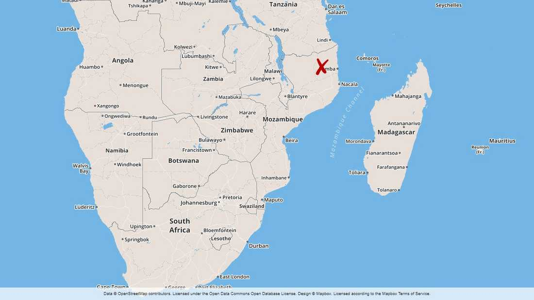 Stora skaror jihadister har dödats i strider i Cabo Delgado i norra Moçambique.