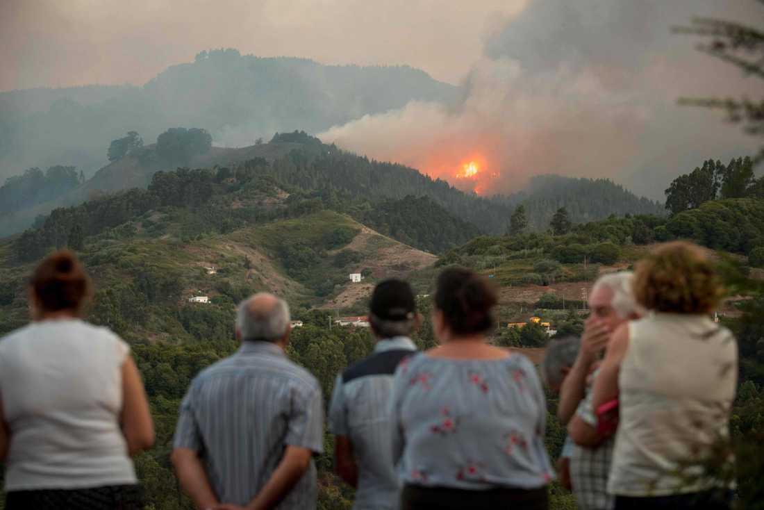 Invånare på Gran Canaria tittat på elden som härjar nära Montana Alta.