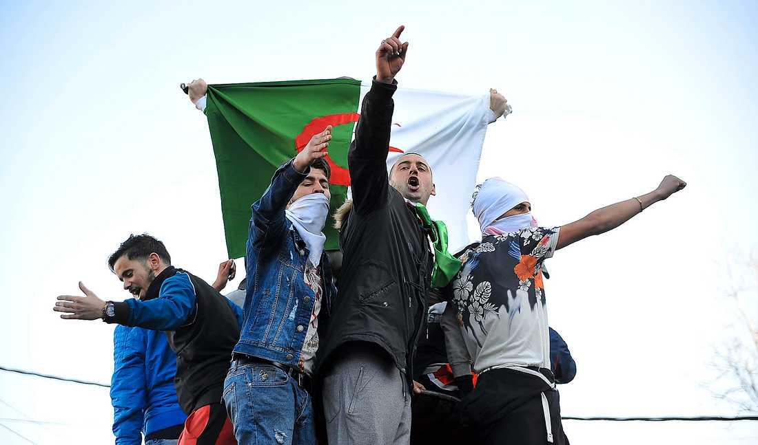 I Alger visar hundratusentals demonstranter dagligen sitt missnöje mot president Bouteflika som tänker kandidera för femte gången i vårens val.
