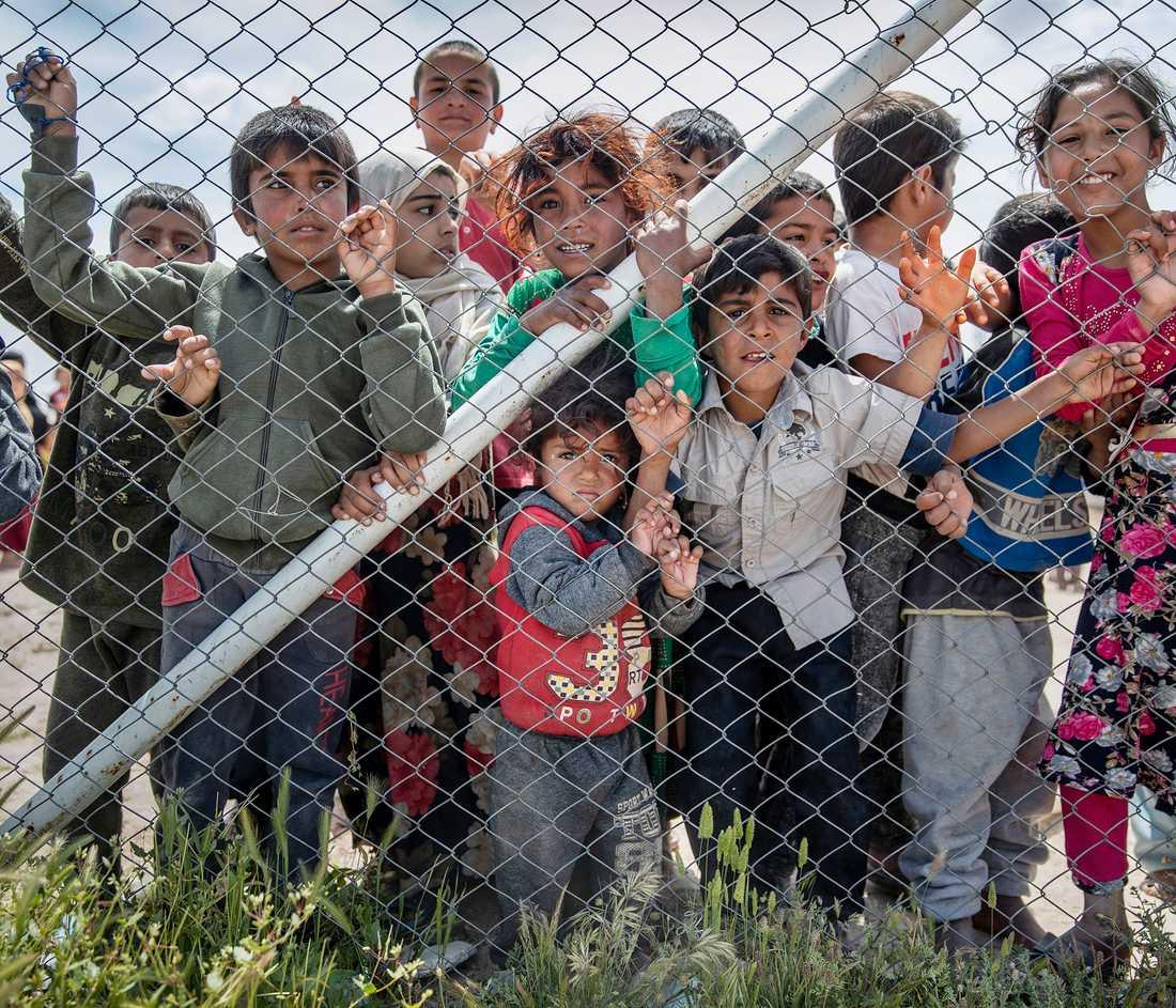 Över 60 svenska barn finns i al-Hol och i nuläget vet ingen vad som kommer att hända med dem.