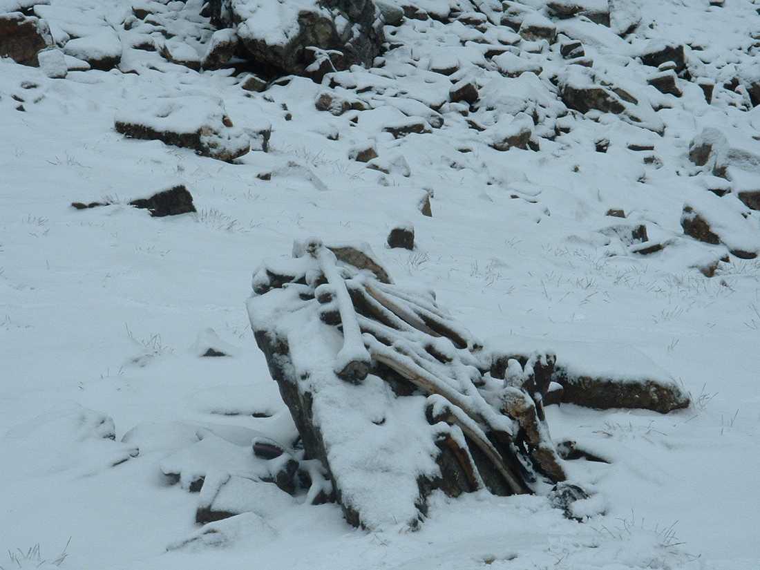 Runt och i sjön ligger kvarlevorna från mellan 600 och 800 personer.