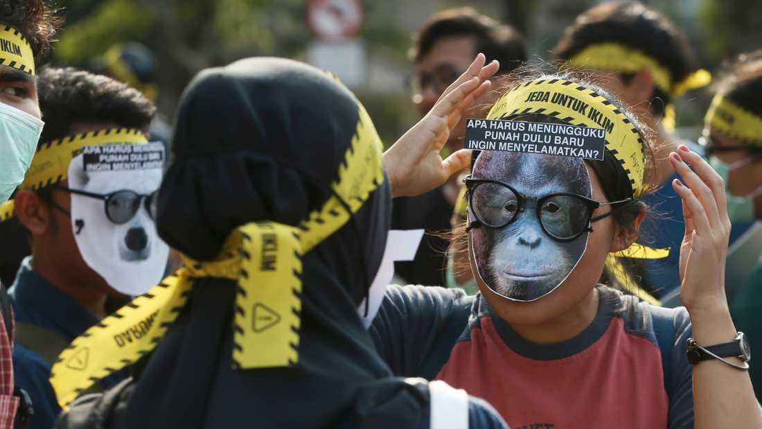 """I Jakarta i Indonesien bär en demonstrant en orangutangmask med texten """"Ska ni vänta på att jag ska bli utdöd för att rädda mig?"""" under en klimatstrejk på fredagen."""