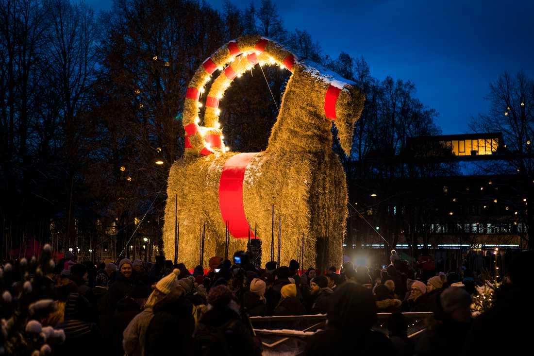 Den stora julbocken i Gävle invigdes på söndagen.