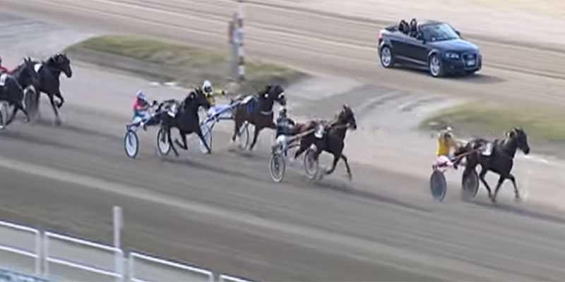 Här driver Alessandro Gocciadoro, i ledningen, sin häst Arazi Boko hårt.