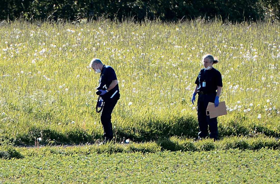 Polisen har hittat nya fynd vid letandet efter försvunna Lisa.