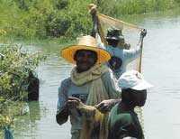 Risfälten invid stora landsvägen går också bra att fiska och bada i.