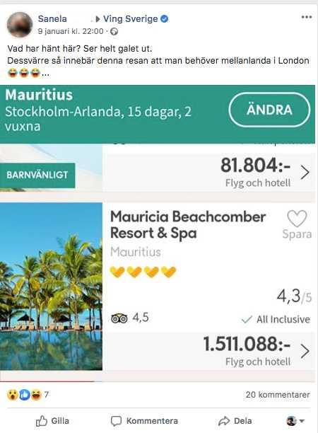 Skärmdump på Vings priser.