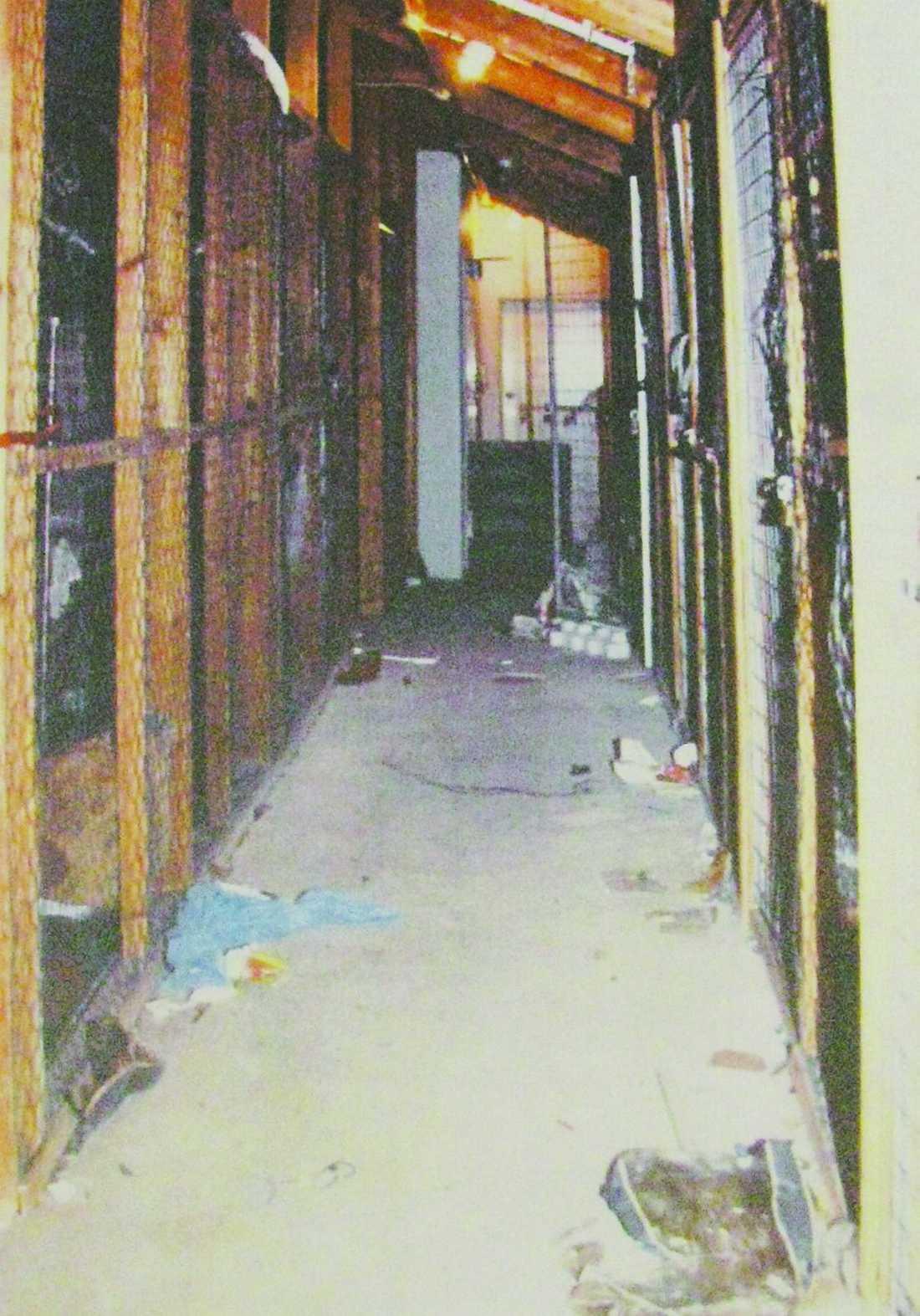 Här blev 12-åring utsatt I ett vindsförråd tvingades en 12-årig flicka att onanera och utföra oralsex på en man. Därefter våldtar ytterligare två män henne. Händelsen inträffade i november 2007.