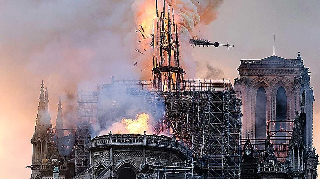 Notre-Dames spira kollapsar under branden i katedralen.