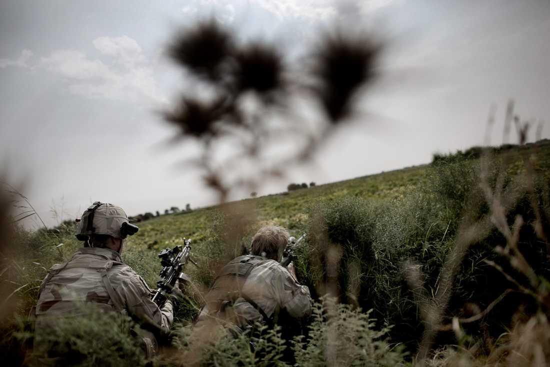Svenska soldater i området kring Alizayi.